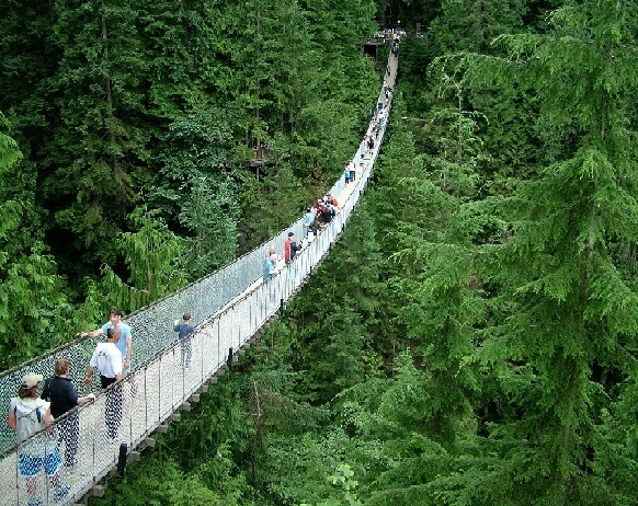 People Walking Across The Capilano Suspension Bridge in Vancouver, BC.