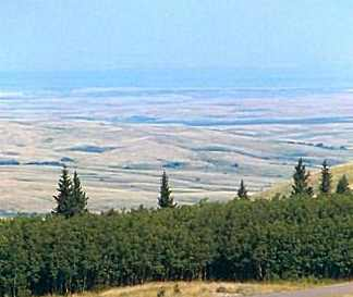 Cypress-Hills-Massacare-View