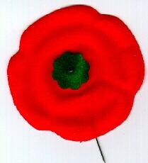 In Flanders Field - Canadian Poppy