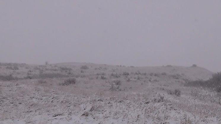 whiteout on the prairies